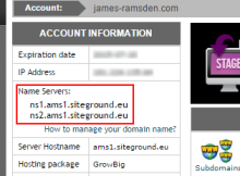 Where to copy DNS (domain name server) information from when setting up a new website