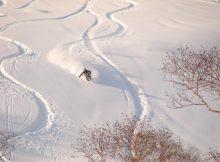 Skier skiing down Niseko, Hokkaido Japan